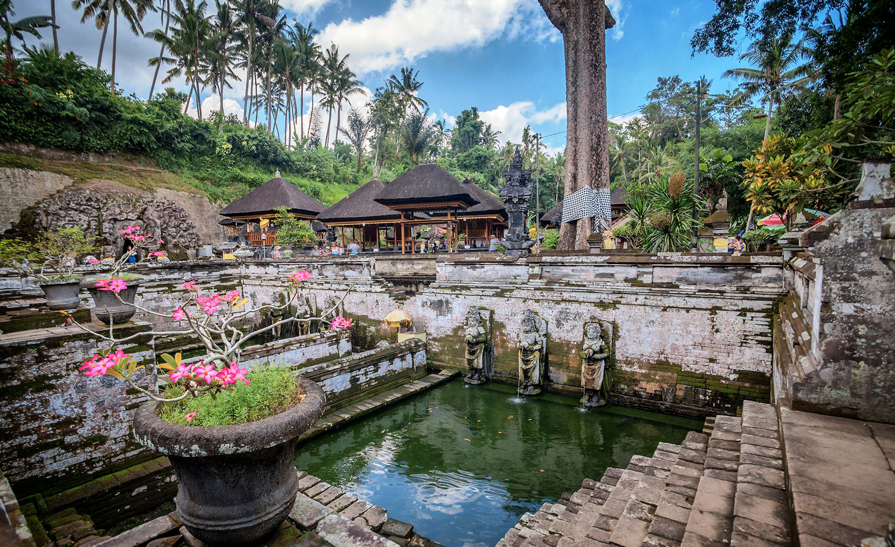 Goa Gajah Alaya Resort Ubud Alaya Hotels Resorts